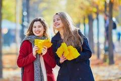 Twee jonge meisjes op een zonnige dalingsdag Stock Foto
