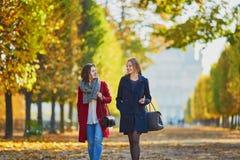 Twee jonge meisjes op een zonnige dalingsdag Stock Afbeelding