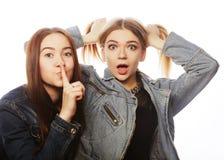Twee jonge meisjesvrienden die pret hebben Stock Foto