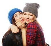 Twee jonge meisjesvrienden die pret hebben Royalty-vrije Stock Foto's