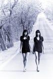Twee jonge modellen royalty-vrije stock foto's