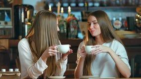 Twee jonge vrouwelijke vrienden die in koffie samenkomen stock videobeelden