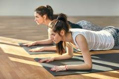 Twee jonge vrouwen die de Lage Plank van yogaasana doen stellen stock afbeelding