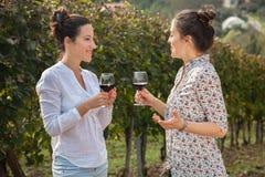 Twee jonge vrouwen die wijn drinken Royalty-vrije Stock Foto's