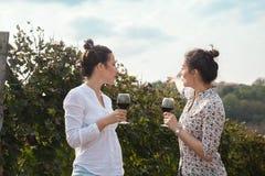 Twee jonge vrouwen die wijn drinken Stock Afbeelding