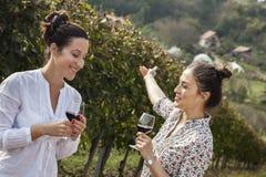 Twee jonge vrouwen die wijn drinken Royalty-vrije Stock Foto