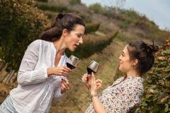 Twee jonge vrouwen die wijn drinken Royalty-vrije Stock Fotografie