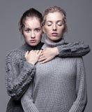 Twee jonge vrouwen in grijze sweaters op grijze achtergrond mooi g Stock Foto