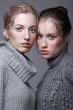 Twee jonge vrouwen in grijze sweaters op grijze achtergrond mooi g Stock Afbeeldingen