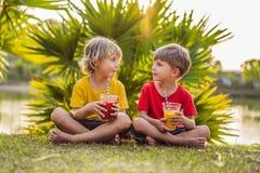 Twee jongens drinken gezonde smoothies tegen de achtergrond van palmen Mango en watermeloen smoothies Gezonde voeding stock afbeeldingen