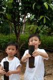 Twee jongens tonen jonge installatie Stock Foto's
