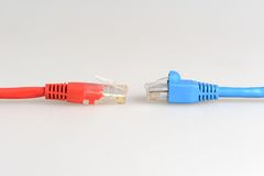 Twee kabels van de netwerkcomputer tegenover elkaar Stock Fotografie