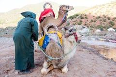 Twee kamelen met de eigenaar van de berbermens treffen voor lange reis voorbereidingen stock fotografie