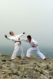 Twee karatekastrijd Stock Afbeeldingen