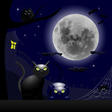 Twee Katten en een Thema van Volle maanhalloween Stock Fotografie