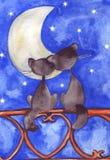 Twee katten in liefde vóór de maan en de sterren Stock Foto