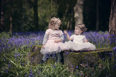 Twee kinderen die die in een hout zitten met de lenteklokjes wordt gevuld Royalty-vrije Stock Afbeelding