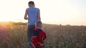 Twee kinderen die handen houden lopend op tarwegebied Zonsondergang stock video