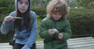 Twee kinderen die van mochi of dango, de Japanse snacks van de rijstbal, op stokken in park genieten stock videobeelden