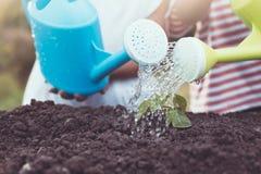 Twee kinderenmeisje die jonge boom met het water geven van pot water geven stock afbeeldingen