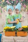 Twee klein aanbiddelijk meisjesspel met gele kuikens Royalty-vrije Stock Foto's