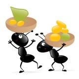 Twee kleine hardworking insecten Royalty-vrije Stock Afbeeldingen
