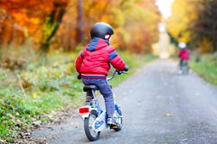 Twee kleine jong geitjejongens die met fietsen in de herfst bospark cirkelen in kleurrijke kleren stock afbeelding