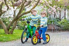 Twee kleine jong geitjejongens die met fietsen in park biking Royalty-vrije Stock Afbeeldingen
