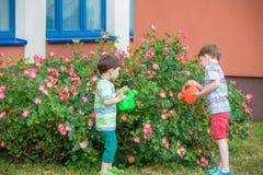 Twee kleine jong geitjejongens die rozen water geven met kunnen in tuin Familie, tuin, het tuinieren, levensstijl Royalty-vrije Stock Afbeeldingen