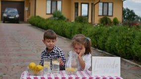Twee kleine jonge geitjes verkopen limonade bij een eigengemaakte limonadetribune op een zonnige dag met een prijsteken voor een  Stock Afbeeldingen