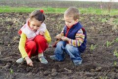 Twee kleine kinderen die zaden planten Royalty-vrije Stock Afbeeldingen