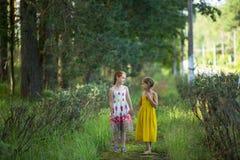 Twee kleine leuke meisjes gaan en spreken in het Park Het lopen Royalty-vrije Stock Fotografie