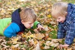 Twee kleine peuterjongens in de herfstpark Royalty-vrije Stock Fotografie