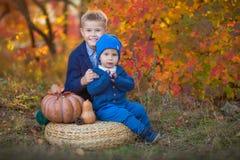 Twee knappe leuke broers die op pompoen in de herfst alleen bos zitten stock foto's
