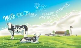 Twee koeien en plons van de melk stock illustratie