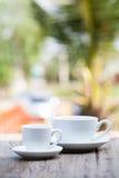 Twee koffiekoppen Royalty-vrije Stock Fotografie