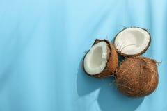 Twee kokosnoot één waarvan verdeel royalty-vrije stock foto
