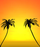 Twee kokospalmen met zonsondergangmening Stock Foto