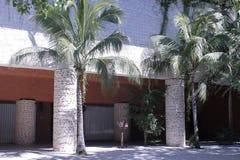 Twee kolommen en twee palmen royalty-vrije stock afbeelding