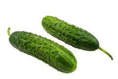 Twee komkommers Royalty-vrije Stock Fotografie