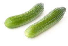 Twee komkommers Stock Fotografie