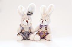 Twee Konijnen van het Stuk speelgoed Royalty-vrije Stock Fotografie