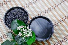 Twee koppen met groene thee Stock Afbeeldingen