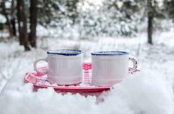 Twee koppen van hete drank op een plaat in een sneeuwbos Stock Afbeeldingen