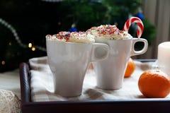 Twee koppen van koffie en slagroom Stock Fotografie