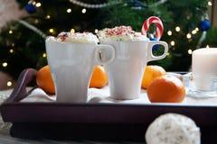 Twee koppen van koffie en slagroom Royalty-vrije Stock Foto's