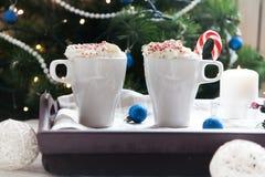 Twee koppen van koffie en slagroom Royalty-vrije Stock Fotografie