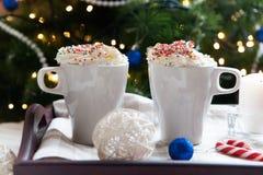Twee koppen van koffie en slagroom Stock Foto's