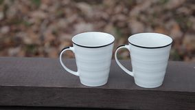 Twee koppen van koffie zijn op de bank in het park stock videobeelden
