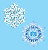 Twee kristalsneeuwvlokken. Stock Afbeeldingen